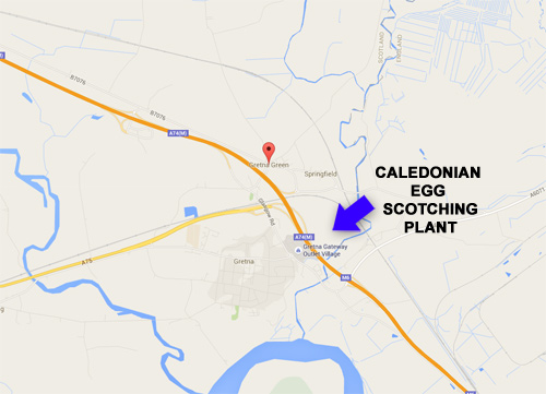 Egg Scotching Plant Location